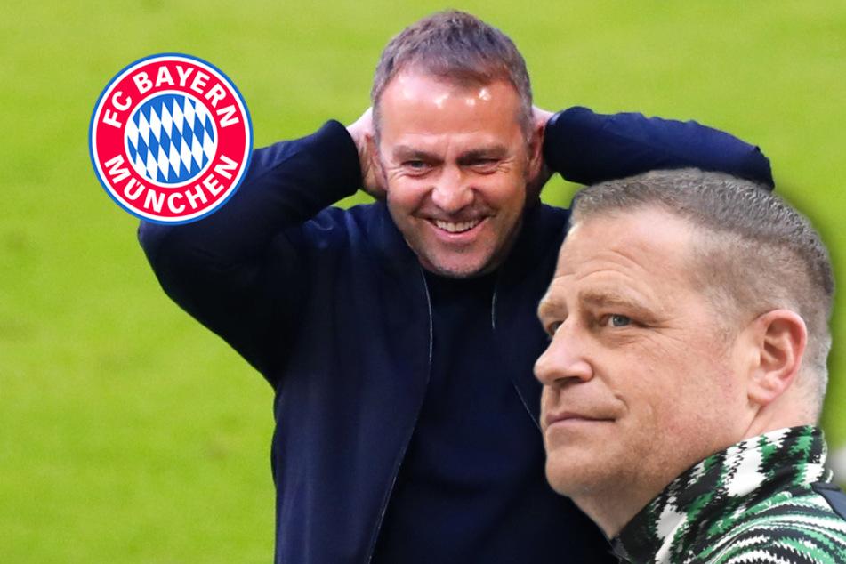 """Zoff am Spielfeldrand nach Bayern-Rot: """"Zeig mir keinen Vogel, Hansi"""""""