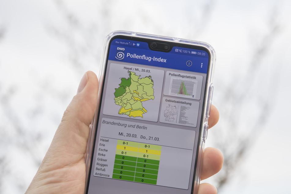 Der Deutsche Wetterdienst bietet seine App kostenlos und ohne Werbung an (Symbolbild).