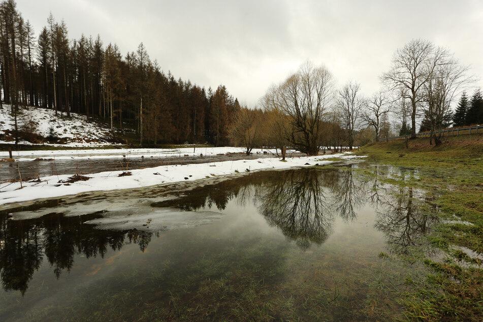 Auf Schnee folgt Tauwetter: Treten nun Sachsen-Anhalts Flüsse über die Ufer?