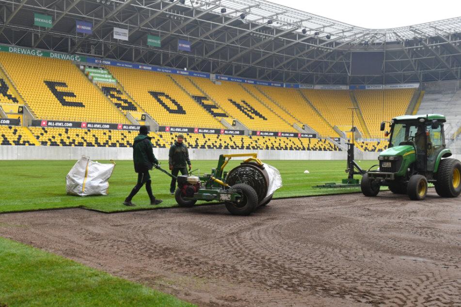 Zuletzt wurde der Rasen im Rudolf-Harbig-Stadion im Januar dieses Jahres ausgetauscht.