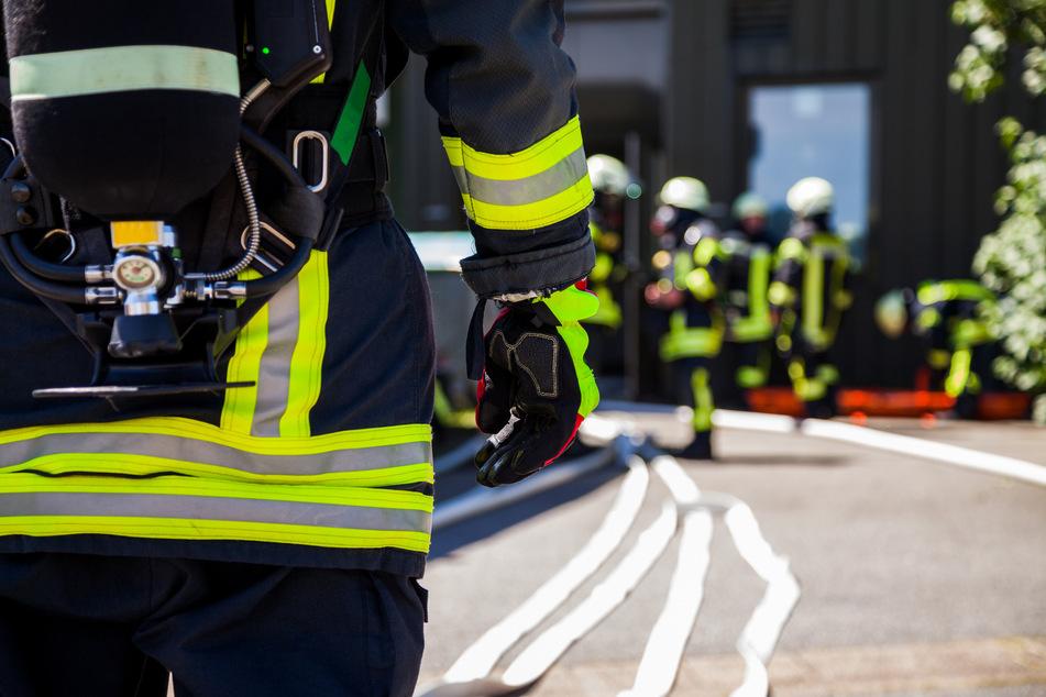 Tragischer Wohnhausbrand: Hund und Herrchen (84) fallen Flammen-Inferno zum Opfer