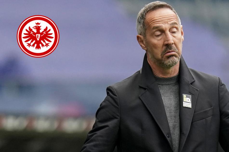 Erst Champions League, dann Eintracht-Abschied? So ist der Stand bei Hütter und Gladbach