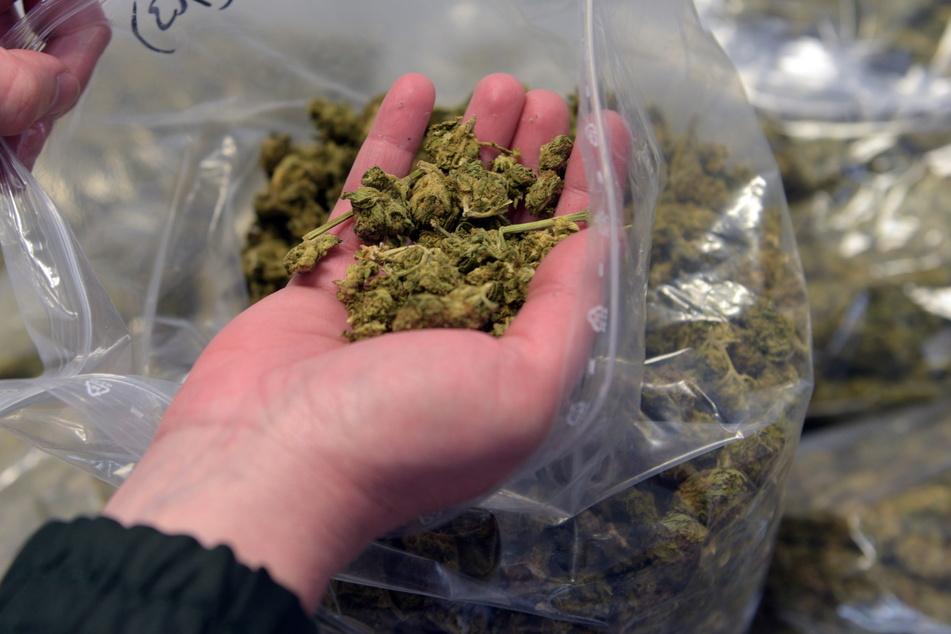 Für mehr als eine Handvoll Marihuana: Die Staatsanwaltschaft hat Anklage erhoben. (Symbolbild)