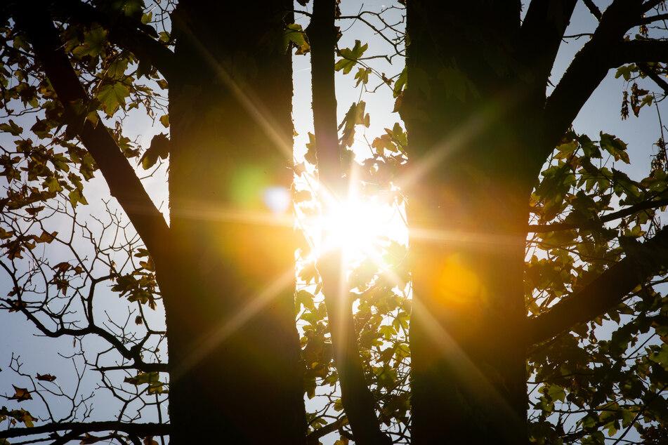Azorenhoch beschert NRW einen goldenen Spätsommer