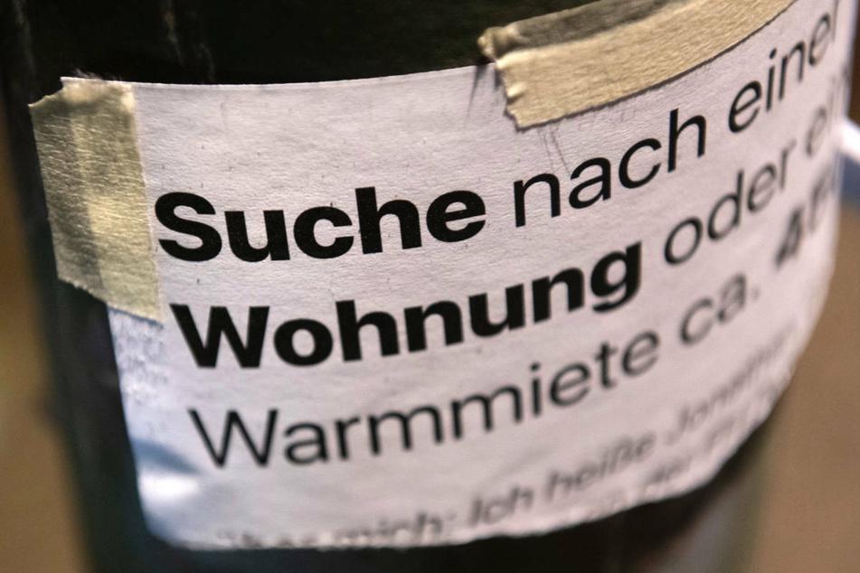 """""""Suche Wohnung"""" steht auf einem Zettel an einer Laterne in Berlin. Am Samstag wollen bis zu 1500 Teilnehmer gegen hohe Mieten in Berlin demonstrieren. (Symbolfoto)"""