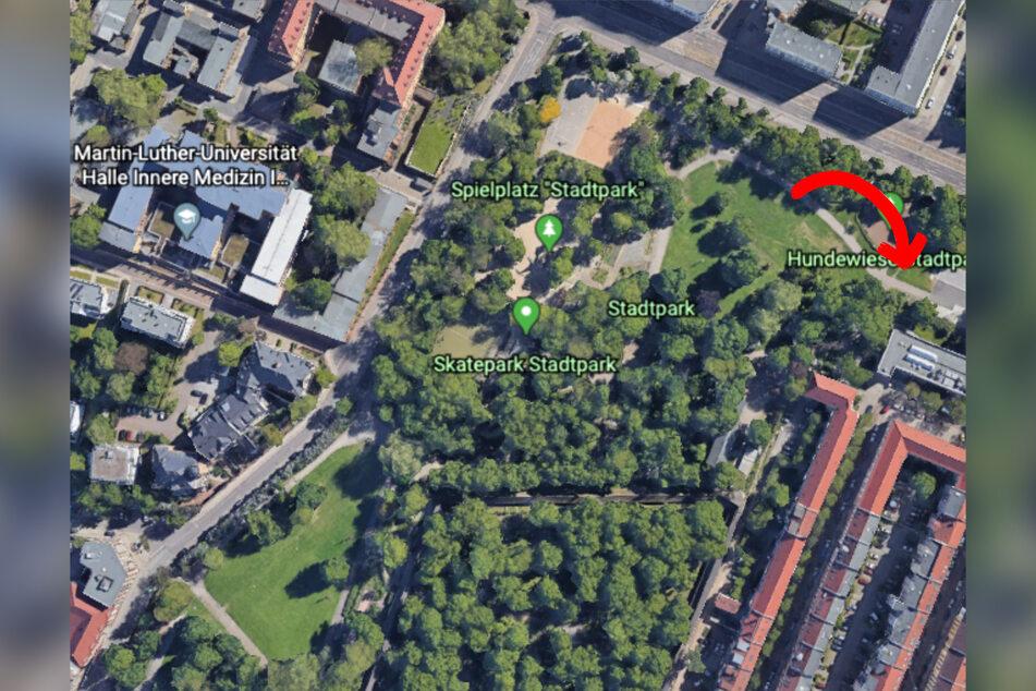 Im Stadtpark Halle wurde die Frau von der Gruppe überfallen.