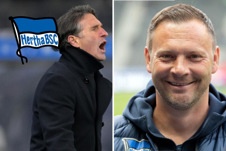Nach Labbadia-Aus bei Hertha: Übernimmt jetzt wieder Dardai?