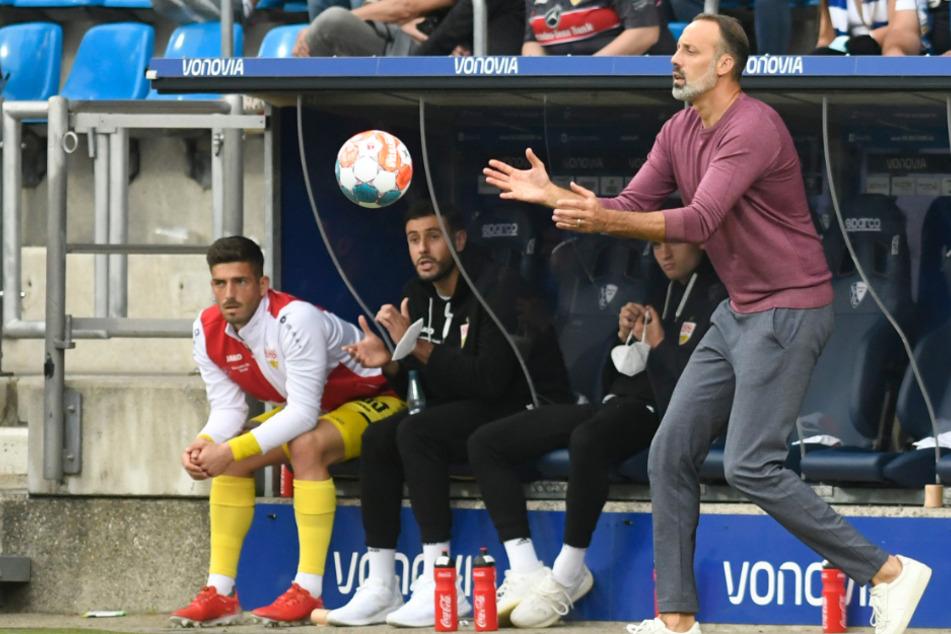 Gibt an der Seitenlinie alles: VfB-Coach Pellegrino Matarazzo (43).