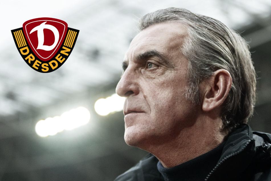 """Dynamo-Boss Minge watscht Profi-Klubs ab: """"Habe kein Verständnis"""""""