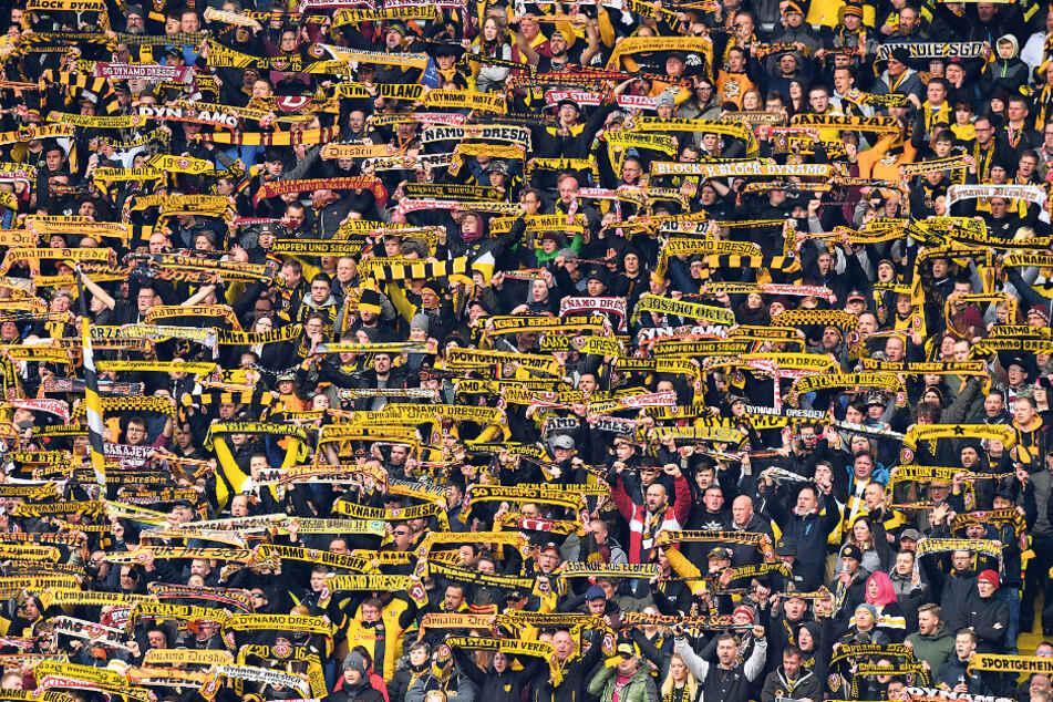 Der Zuschauerschnitt ging bei Dynamo leicht nach unten - was vor allem an den mangelnden Leistungen der Mannschaft in der Hinrunde lag.