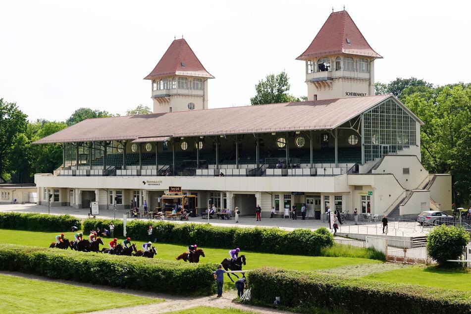 Auf der Galopprennbahn Scheibenholz gibt es mehr als Pferde zu sehen: großes Kino!