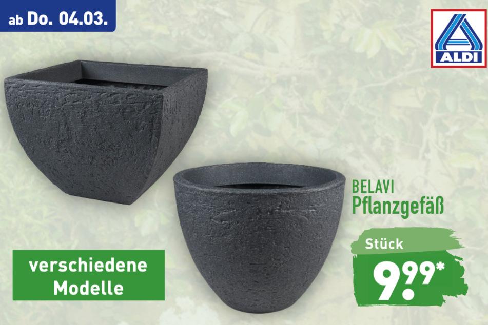Pflanzgefäße von Belavi ab Donnerstag für 9,99 Euro bei ALDI in Genthin