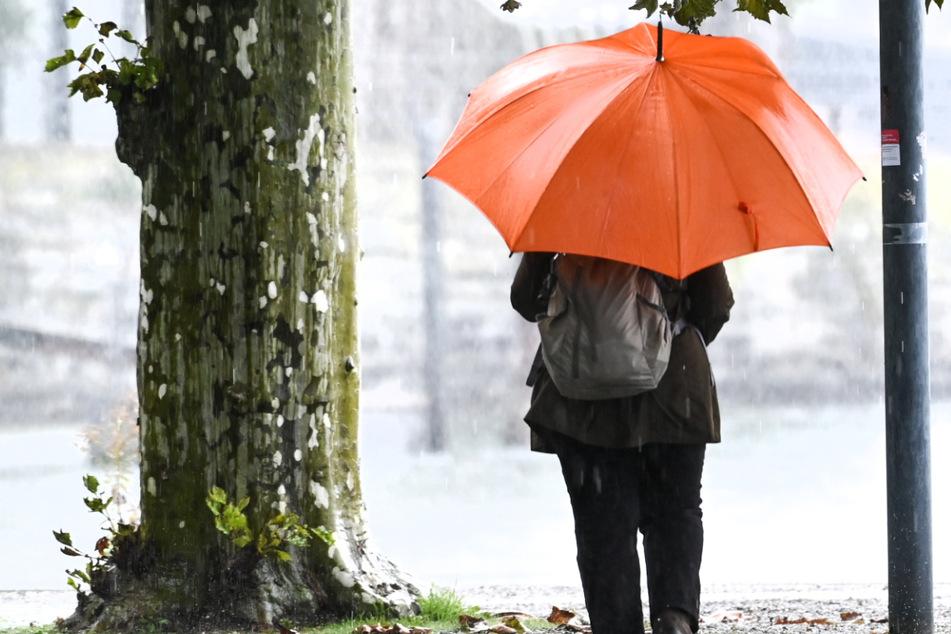 Sturmböen und Regen: Jetzt kommt das Ekel-Wetter zu uns