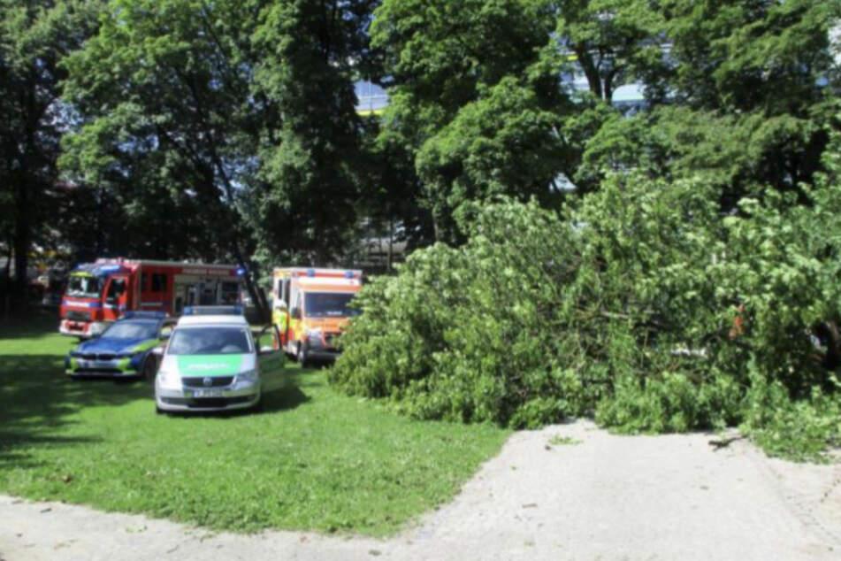 Fahrzeuge der Rettungskräfte stehen an der Unglücksstelle in Augsburg.