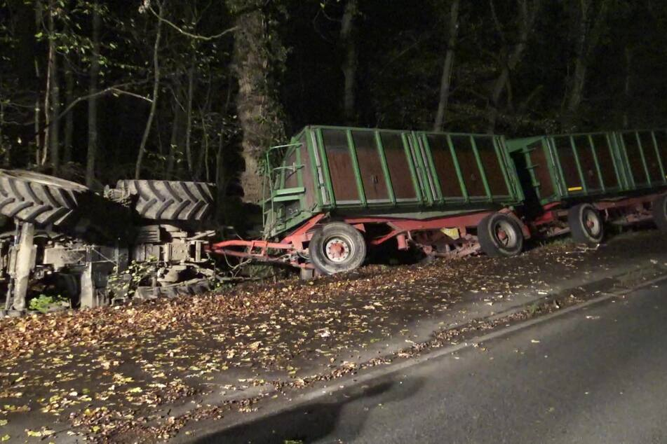 Wildschweine plötzlich auf Straße: Traktor-Fahrer will noch ausweichen!