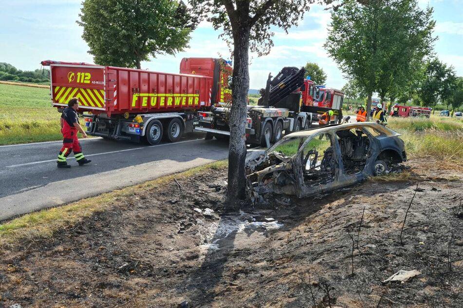 Das Auto ging nach dem Crash gegen den Baum in Flammen auf.