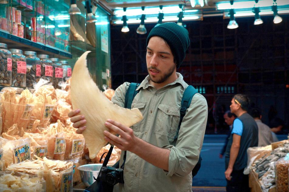 "Filmemacher Ali Tabrizi in einer Szene der Dokumentation ""Seaspiracy""."