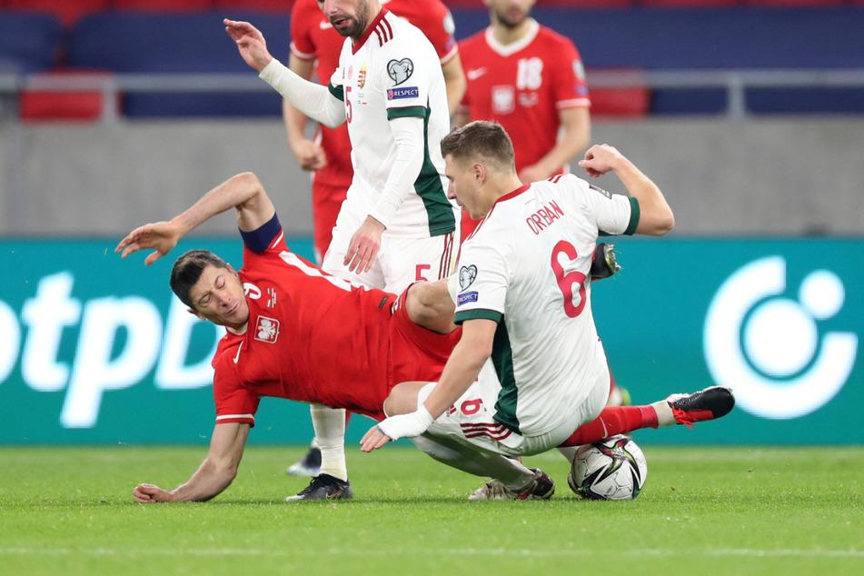 Erst am vergangenen Donnerstag sind Willi Orban (28, re.) und Robert Lewandowski (32) im WM-Qualifikationsspiel zwischen Ungarn und Polen aufeinander getroffen. Beide erzielten ein Tor. Kommende Woche könnten sie sich schon wieder gegenüberstehen.