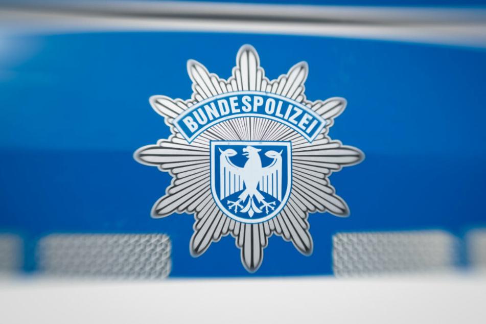 Berlin: Fünf Dienstwagen auf Bundespolizei-Gelände abgefackelt: Staatsschutz ermittelt