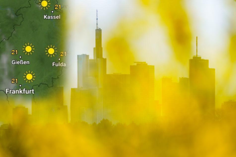 Ab Montag setzt sich in ganz Hessen - wie hier auf dem Frankfurter Lohrberg - die Sonne durch.