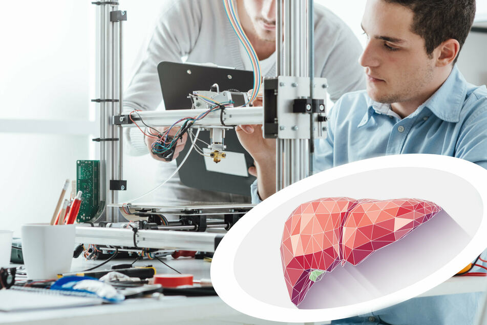 Hot off the presses! New bioprinted organs could save lives