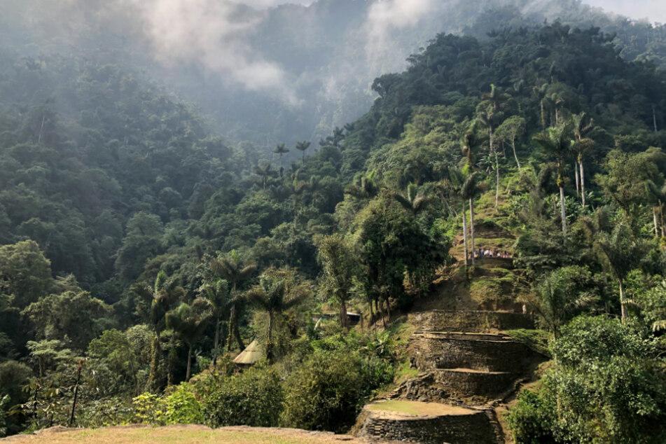 Münchner irrt nach Schamanenritual tagelang durch Kolumbiens Dschungel