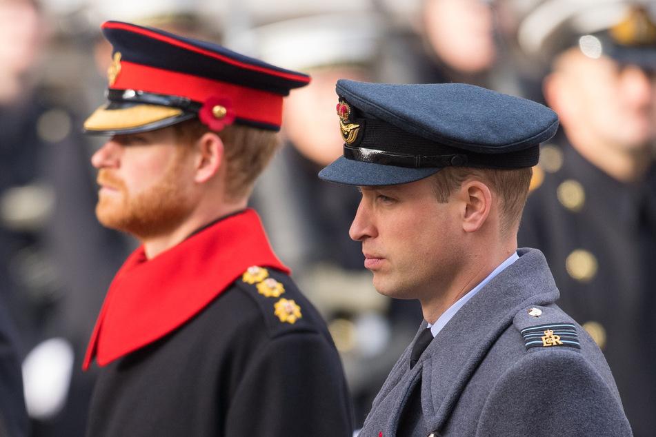 Harry und William werden diesmal weder in Uniform, noch zusammen auftreten.