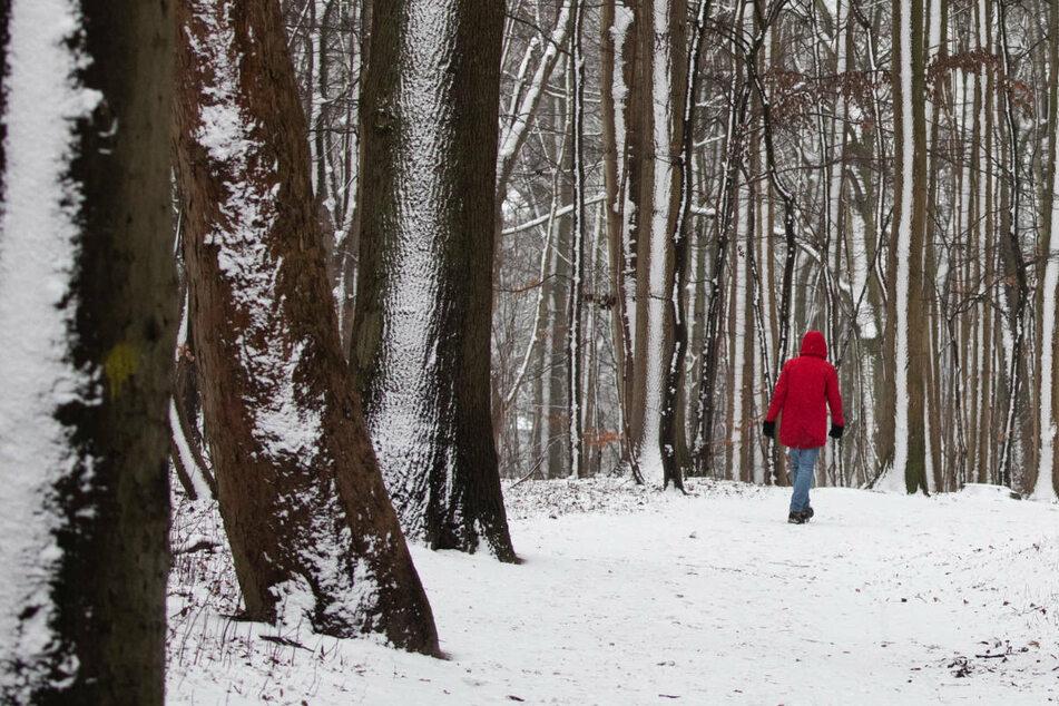 Kein Spaziergang im Schnee: Innenministerium rät, zu Hause zu bleiben