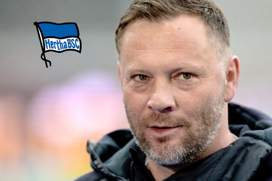 Wie geht es Pal Dardai? Hertha gibt Corona-Update zum infizierten Coach