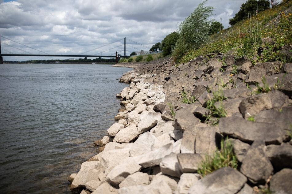 Niedriger Pegel: Rhein führt wenig Wasser!