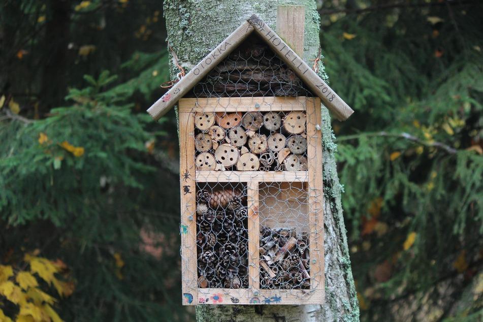 Ein Insektenhotel ist schnell gebaut, kann aber auch käuflich erworben werden.