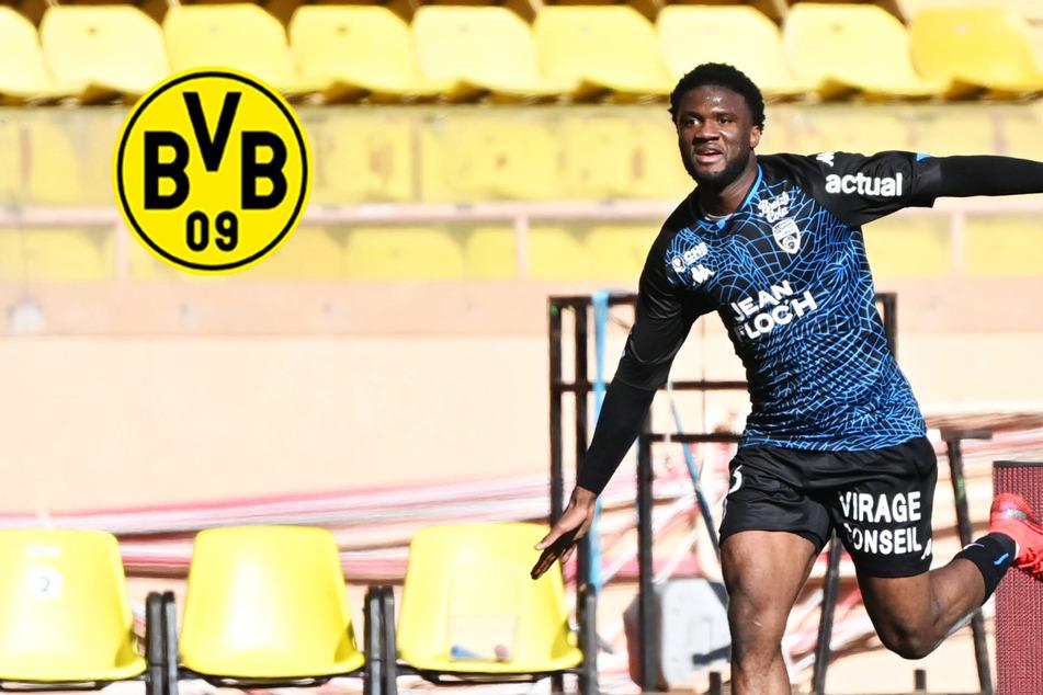 BVB an Sturmkante dran: Krallt sich Dortmund einen Torjäger aus der Ligue 1?