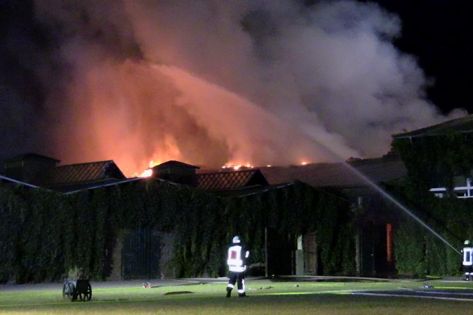 Feuer in Pferdegestüt ausgebrochen: Tiere gerettet