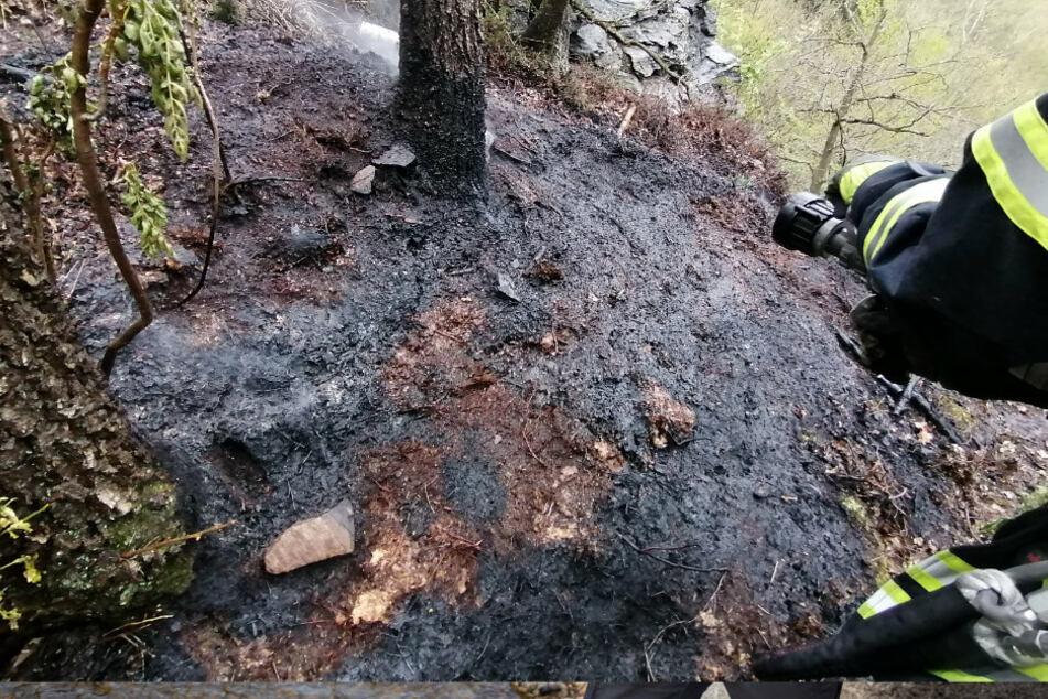 Wegen Trockenheit: Waldbrand im Erzgebirge