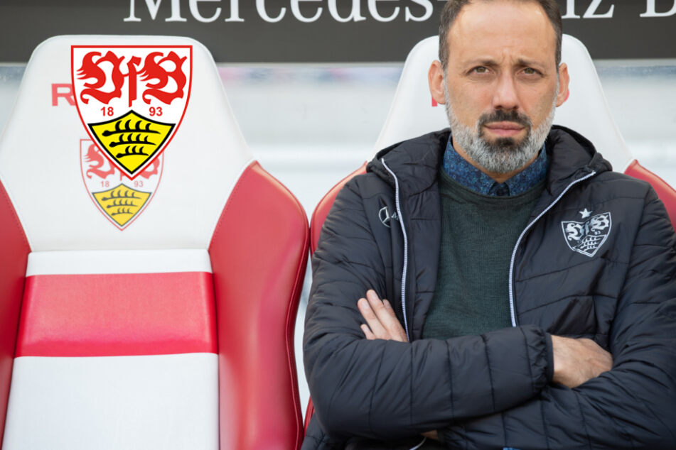 VfB-Coach Matarazzo: Fußball in Deutschland wichtiger als das große Geld