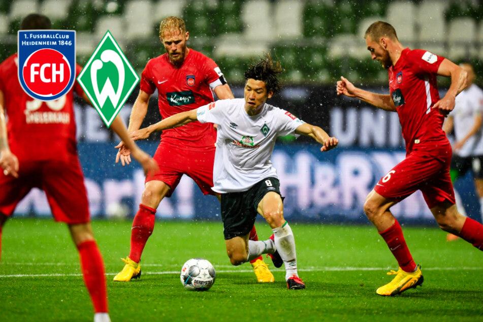 1. FC Heidenheim gegen SV Werder: Rettet Bremen die verkorkste Saison doch noch?
