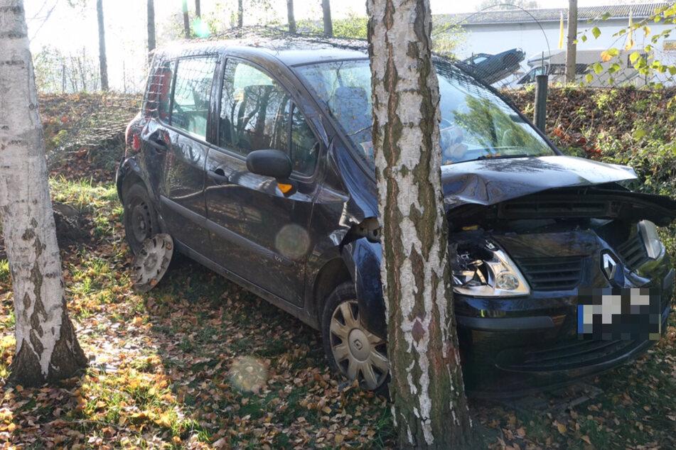 Der Renault schleuderte durch die Kollision gegen einen Baum.