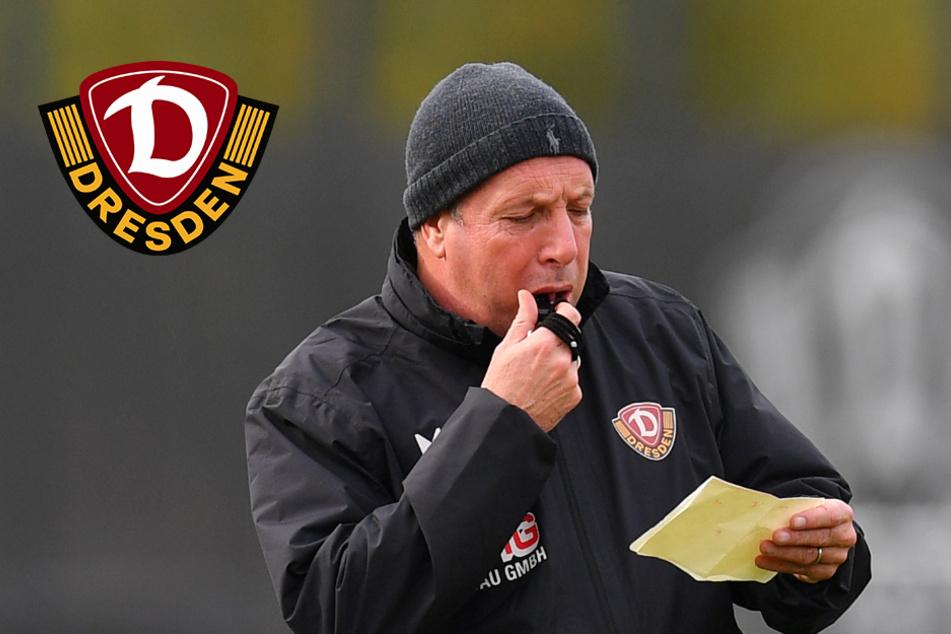 Dynamo-Trainer noch ohne neuen Vertrag: Eine Belastung für alle?