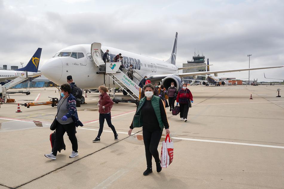 Erntehelfer aus Rumänien wurden nach Deutschland geflogen.