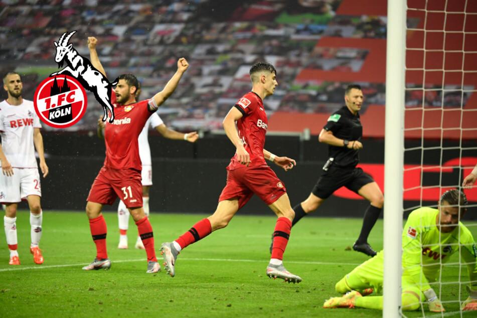 1. FC Köln muss nach Derbypleite in Leverkusen weiter zittern