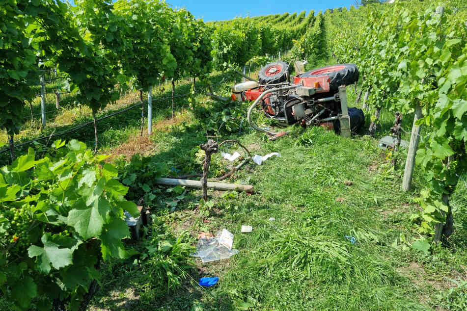 Das Wrack des Traktors am Fuße des Weinbergs.