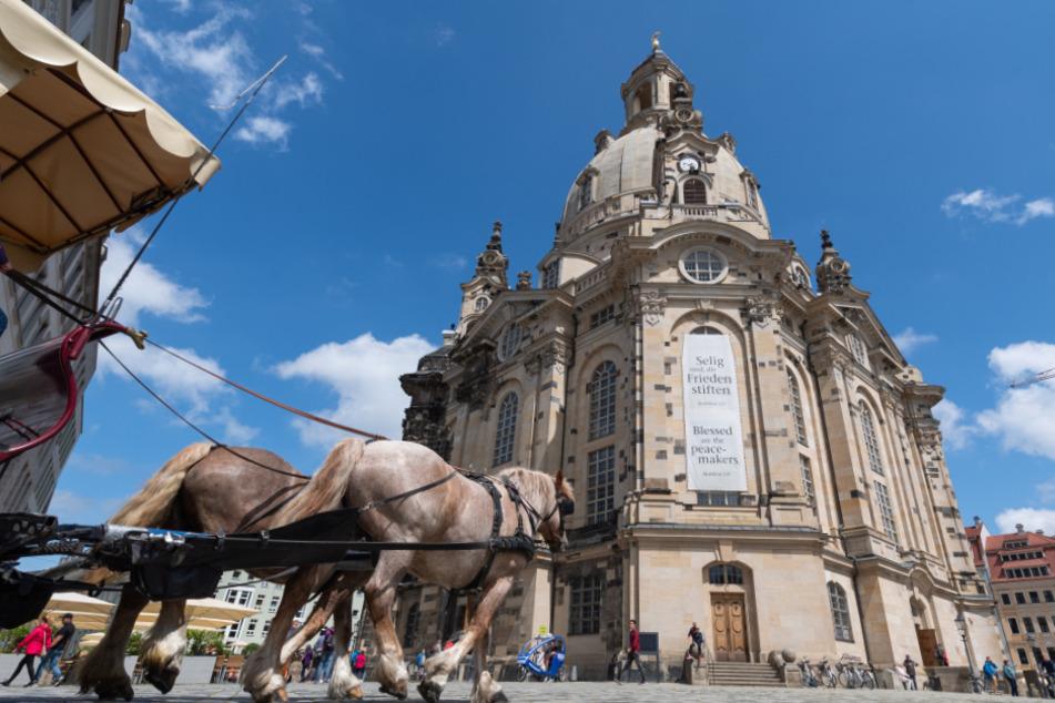 Eine Pferdekutsche in Dresden. In der Landeshauptstadt kehrt mittlerweile immer mehr Normalität ein.