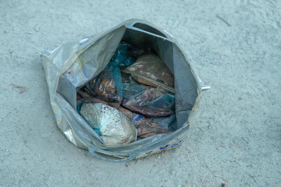 In dem Container waren illegal entsorgte Essenreste.