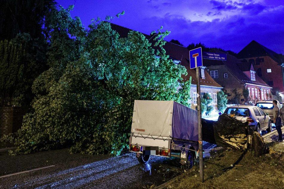 Gewitter und starke Regenschauer ziehen über den Kieler Ortsteil Holtenau, in dem ein umgekippter Baum eine Straße versperrt.