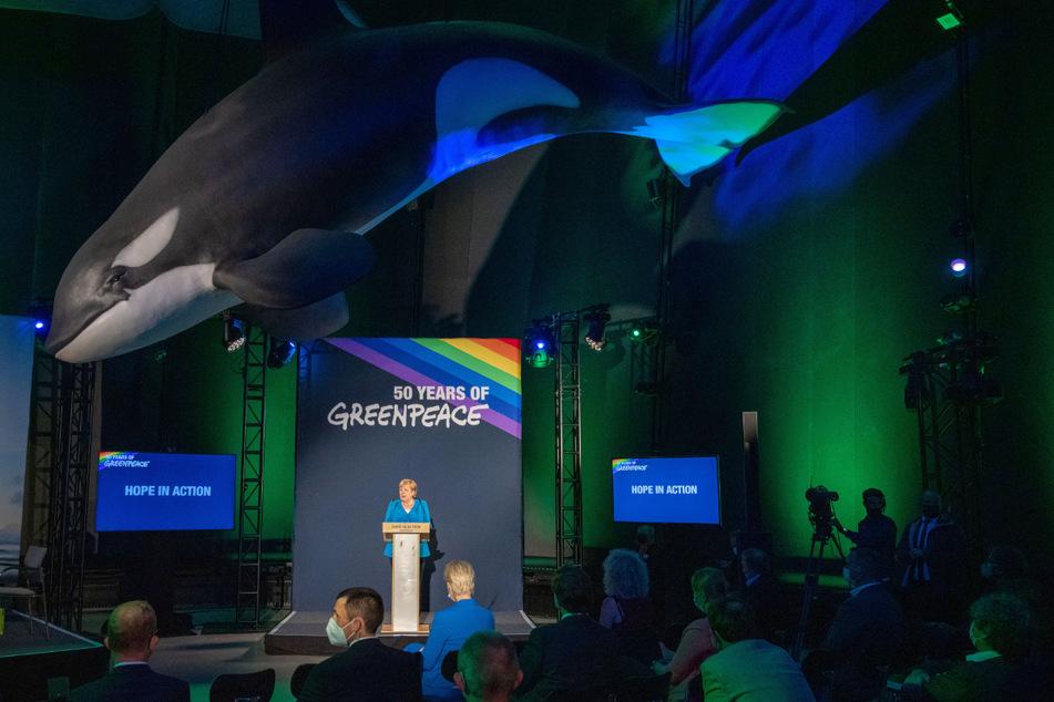 Die Geburtsstunde von Greenpeace als internationaler Organisation wurde mit einer Abendveranstaltung im Ozeaneum Stralsund gefeiert.
