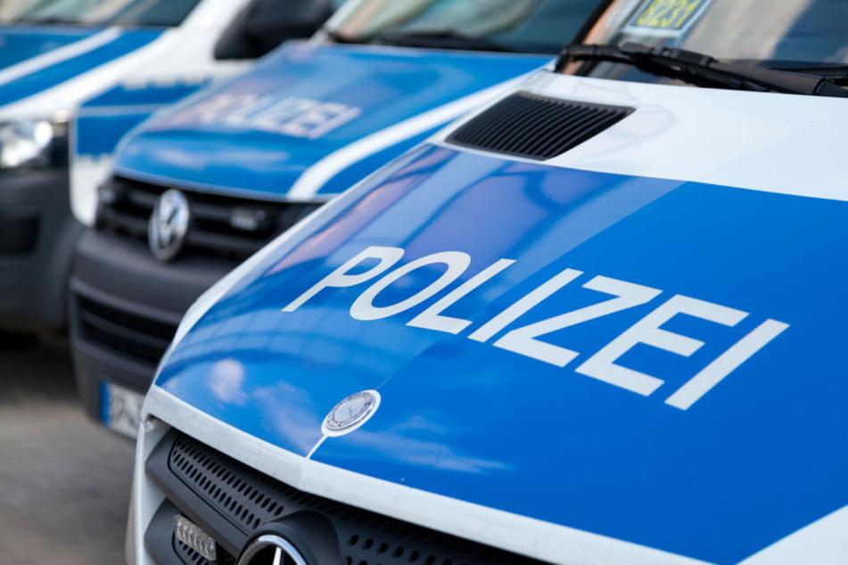 """Hund beißt Polizistin, Radfahrer zeigt Mittelfinger: Straftaten bei """"Ringspaziergang"""" in Zittau"""