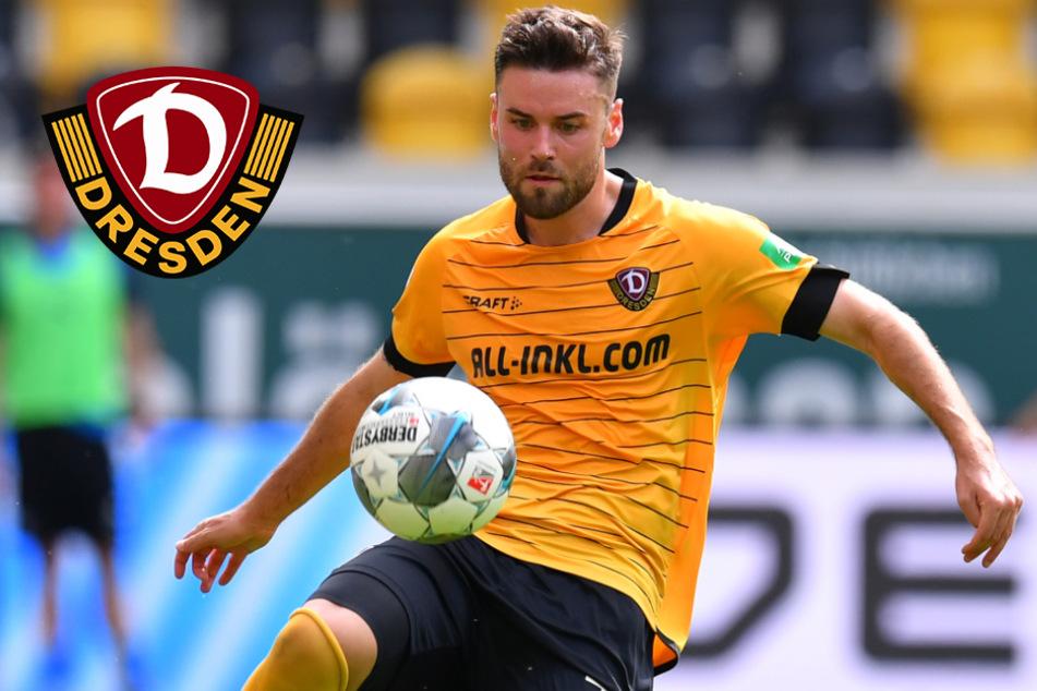 Er ist wieder da! Niklas Kreuzer kehrt zu Dynamo Dresden zurück