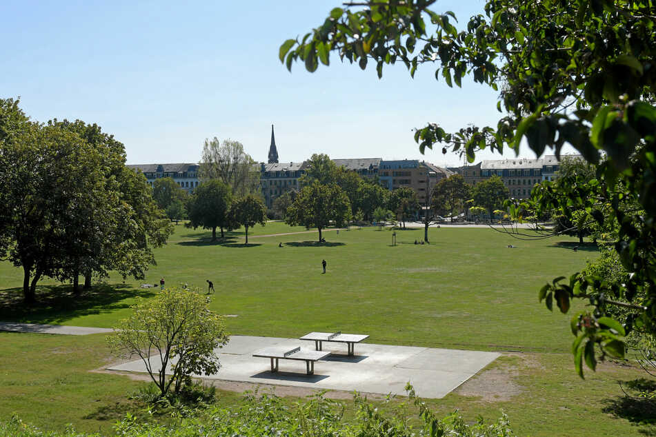 Im Dresdner Alaunpark kam es zu einem sexuellen Übergriff. (Archivbild)
