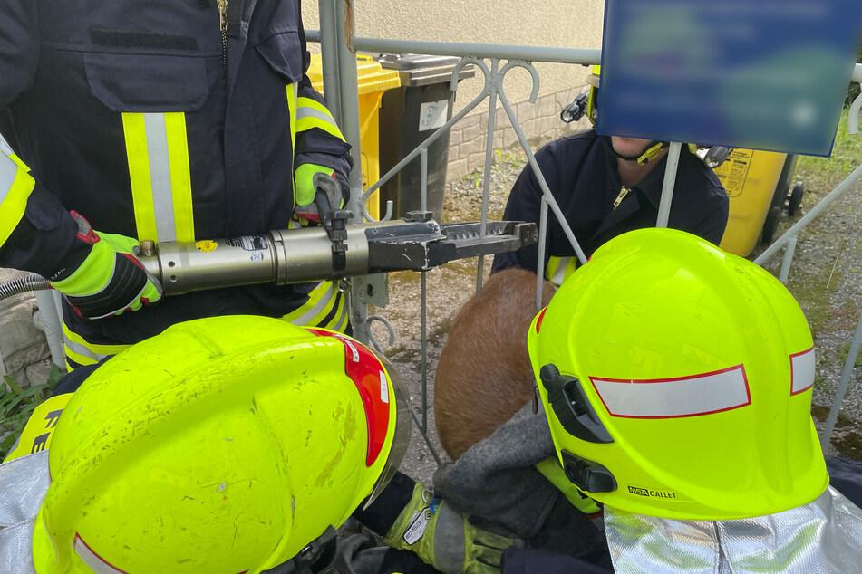 Mit einem hydraulischen Gerät durchtrennten die Kameraden der Feuerwehr eine Stange an dem Zaun, um das Reh zu befreien.