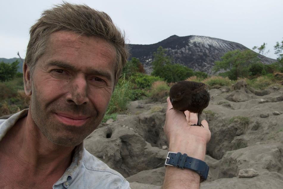Er ist sich für nichts zu schade: Um das Brutverhalten der Großfußhühner zu erklären, gräbt Steffens in Vulkanasche. Dort legen die Vögel ihre Eier und überlassen das Brüten dem Vulkan.